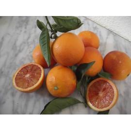 Blood Oranges 6 Kg